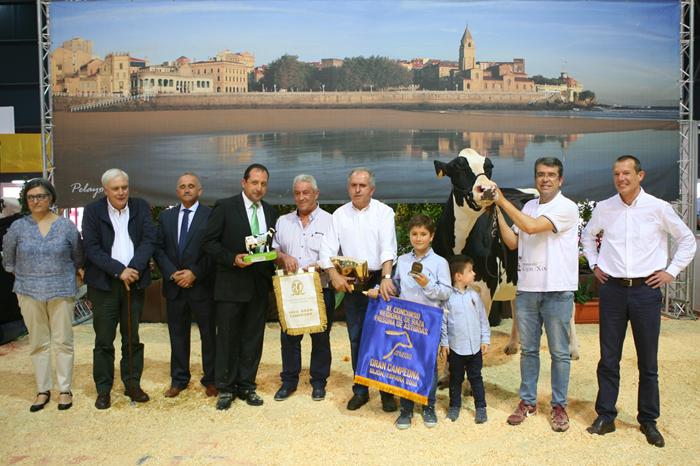 Badiola Airlift Kenda, Vaca Gran Campeona en el Concurso Regional de Asturias de la Raza Frisona