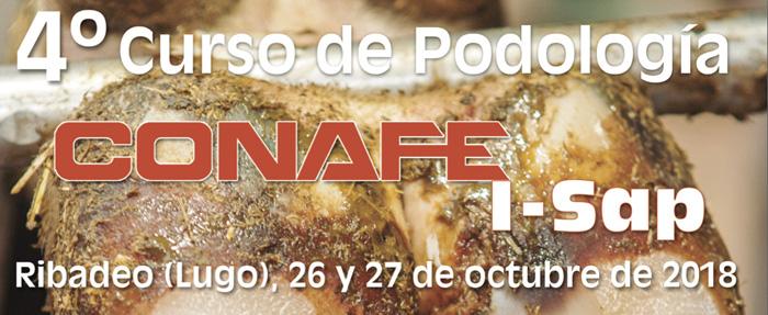 IV Curso de Podología CONAFE I-Sap y VII Unificación de Criterios entre Podólogo